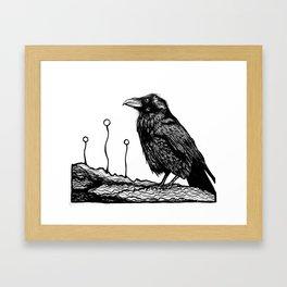 Jovial Raven Framed Art Print