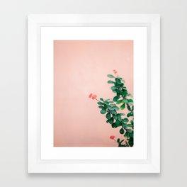 Floral photography print   Green on coral   Botanical photo art Framed Art Print