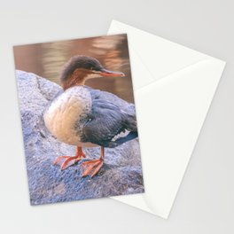 merganser Stationery Cards