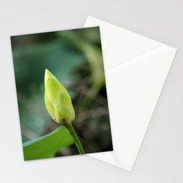 Lotus Bud Stationery Cards