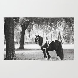 Majestic Horse Rug