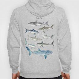 Sharks Hoodie