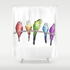 Rainbow Budgie birds Shower Curtain