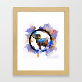 CO Big Horn Sheep Sunset Framed Art Print