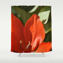 Red spring flower & green leaves Shower Curtain