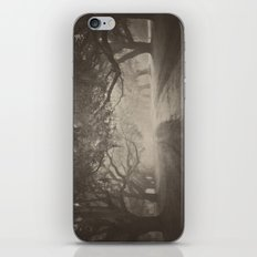 Avenue of Oaks iPhone & iPod Skin