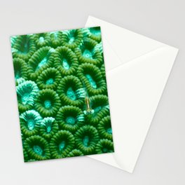 Upon the green circles of sponges rests a little fish Stationery Cards