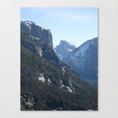 Fliping Canvas Print