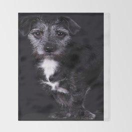 Pop the Dog Throw Blanket