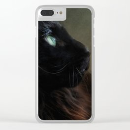 black maine coon Clear iPhone Case