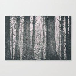 foggy tillamook Canvas Print