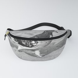 Black and White Beach Birds Fanny Pack