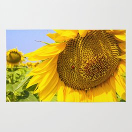 Varna Sunflower Field Rug