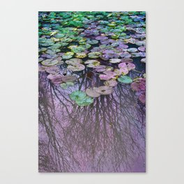 Dreamy Water Lily  Pond Canvas Print