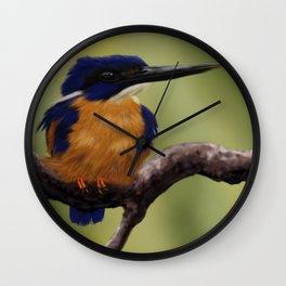 Auzur Kingfisher Wall Clock