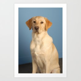 Nolan the Dog Art Print