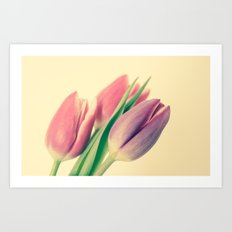 A Touch Of Colour  Art Print