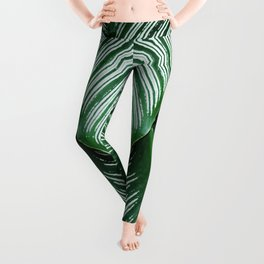 Green Tropical Leaves with White Stripes Closeup Leggings