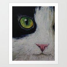 Japanese Bobtail Cat Art Print