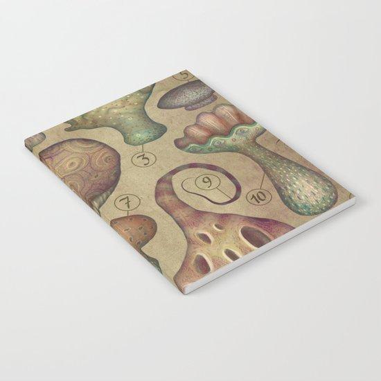 FUNGI I Notebook
