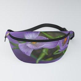 Purple Crocus in a Pot Fanny Pack