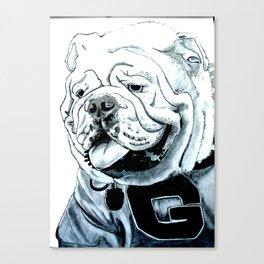 Uga the Bulldog Canvas Print