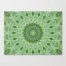 Green Beauty Canvas Print