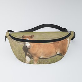 Watercolor Horse 29, Icelandic Pony, Höfn, Iceland, Ready or Not! Fanny Pack
