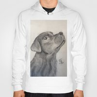 lab Hoodies featuring Chocolate Lab by Samicam