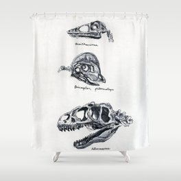 Dino Skulls Study Shower Curtain