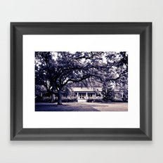 Audubon Clubhouse II Framed Art Print