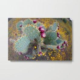 Cactus Bouquet Metal Print