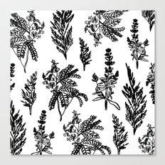 fleur noir Canvas Print