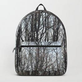 On a Cold Day Backpack