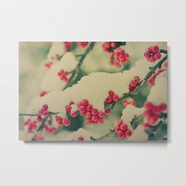 Winter Berry Metal Print