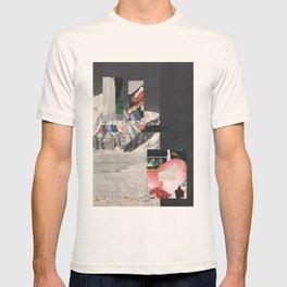 Destruction of evidence T-shirt