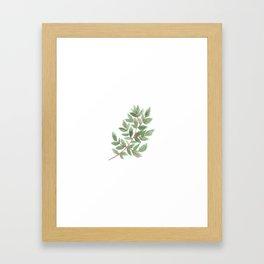 leaf 3 Framed Art Print