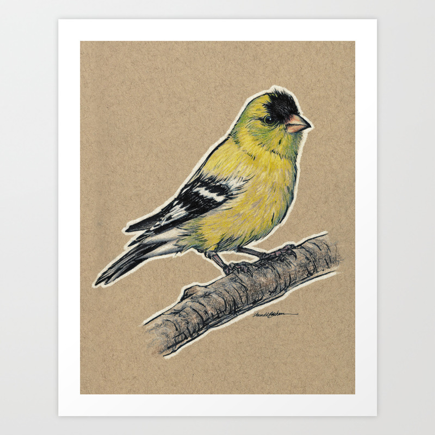 State Bird Series New Jersey Goldfinch Art Print By Theartingsofme Society6