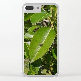 Teeny Fly ... Big Leaf Clear iPhone Case