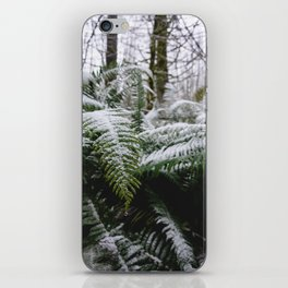 Fern Forest Winter Pacific Northwest Snow III - Nature Photography iPhone Skin