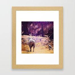 Lamb Frolic with Mama Ewe by CheyAnne Sexton Framed Art Print