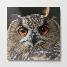 Owl_20180202_by_JAMFoto Metal Print