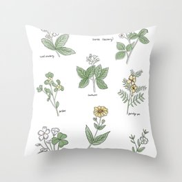 Wildflower Guide Illustration Throw Pillow