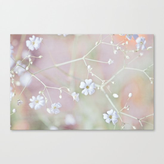 Pastel Wonderland Canvas Print