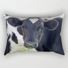 Bessy Rectangular Pillow