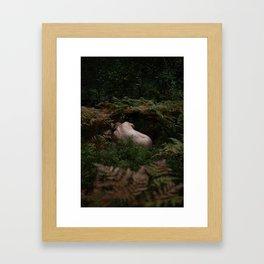 Caught Between the Ferns | Stockholm, Sweden Framed Art Print