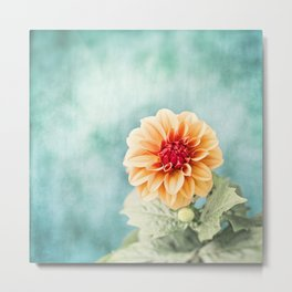 Aqua Orange Dahlia Flower Photography, Turquoise Teal Peach Nature Art Metal Print