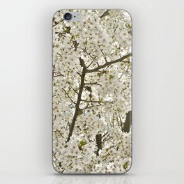 cherry blossom tree iPhone Skin