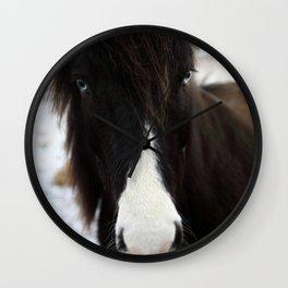 Blue Eye Icelandic Horse Wall Clock