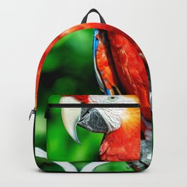 Amazon Parrot Backpack